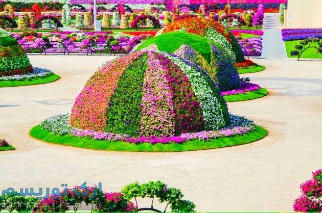 Dubai-Miracle-Garden-221