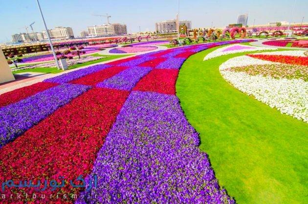 Dubai-Miracle-Garden-261