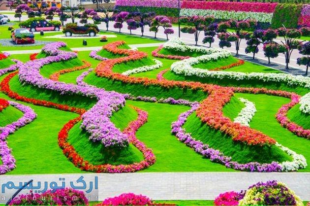 Dubai-Miracle-Garden-281