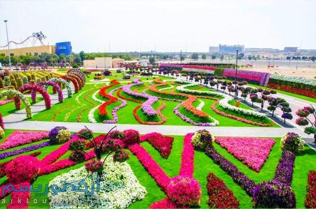 Dubai-Miracle-Garden-301