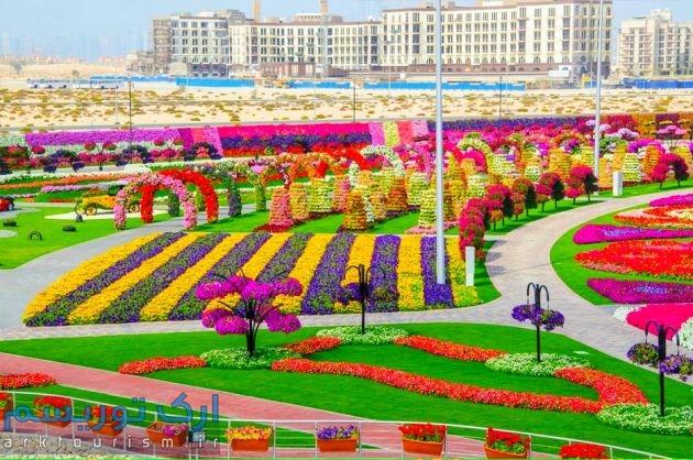 Dubai-Miracle-Garden-311