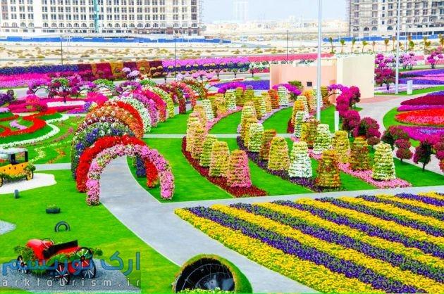 Dubai-Miracle-Garden-61