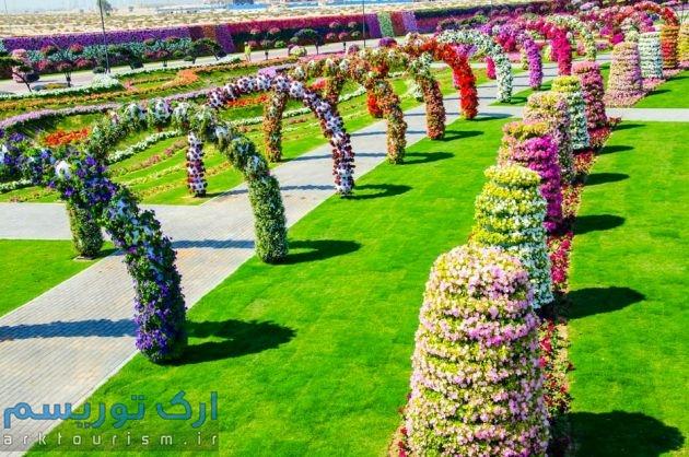 Dubai-Miracle-Garden-71