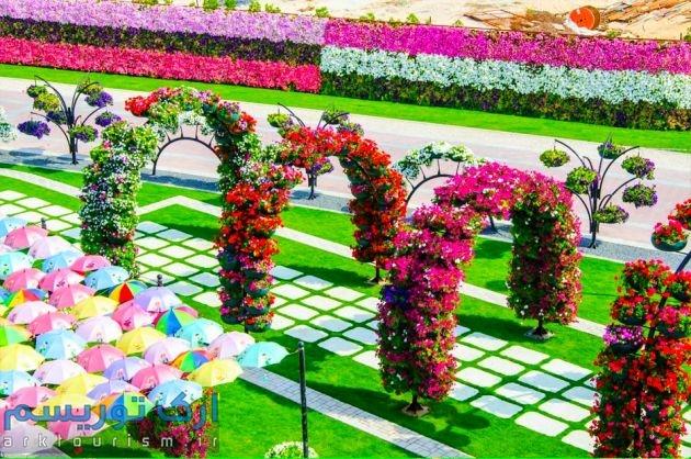 Dubai-Miracle-Garden-81