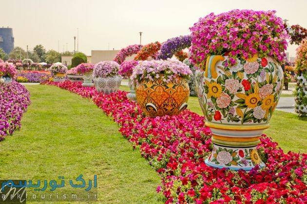 Dubai-Miracle-Garden6