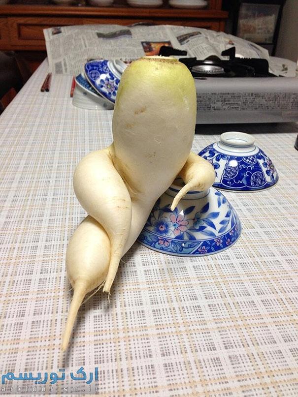 سبزی عجیب (20)