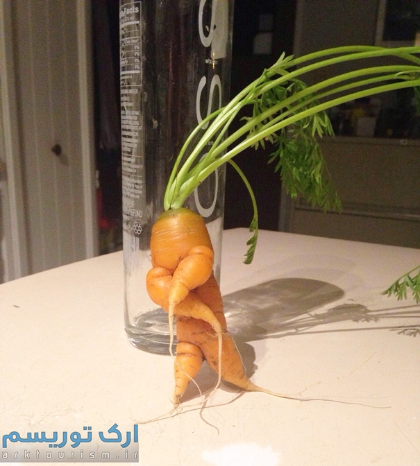 سبزی عجیب (5)
