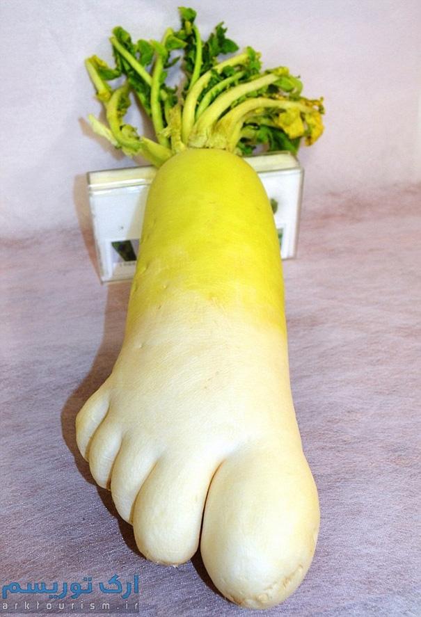 سبزی عجیب (6)