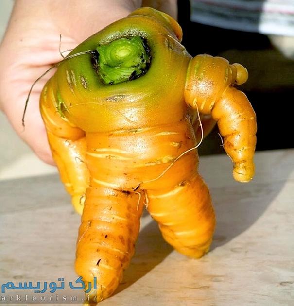 سبزی عجیب (8)