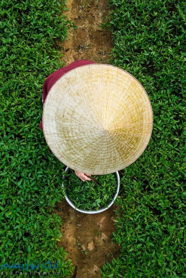 ویتنام (9)