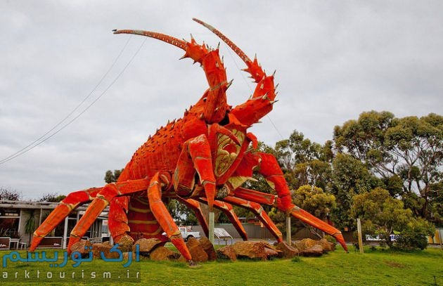 1438690599161_Big-Lobster-South-Australia-IMG1