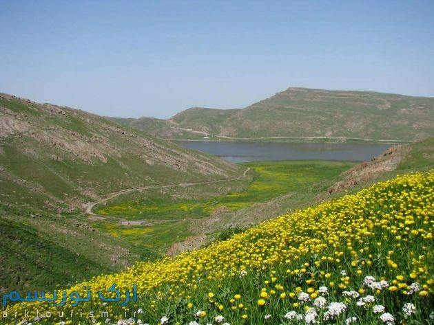 iran (10)