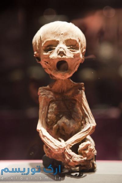 museo de las momias guanajuato (11)