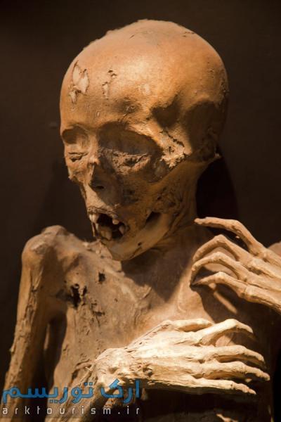 museo de las momias guanajuato (13)