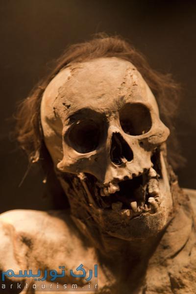 museo de las momias guanajuato (14)