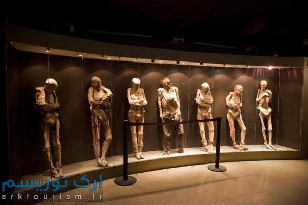 museo de las momias guanajuato (16)