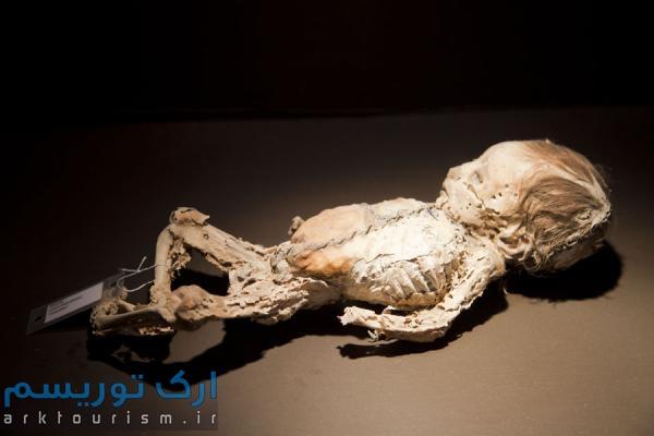 museo de las momias guanajuato (4)