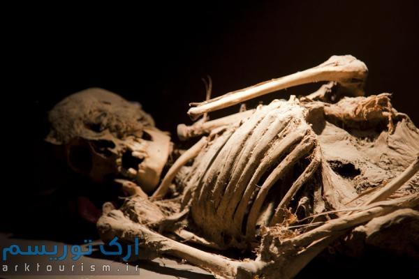 museo de las momias guanajuato (7)