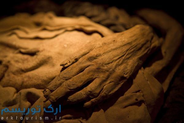 museo de las momias guanajuato (8)