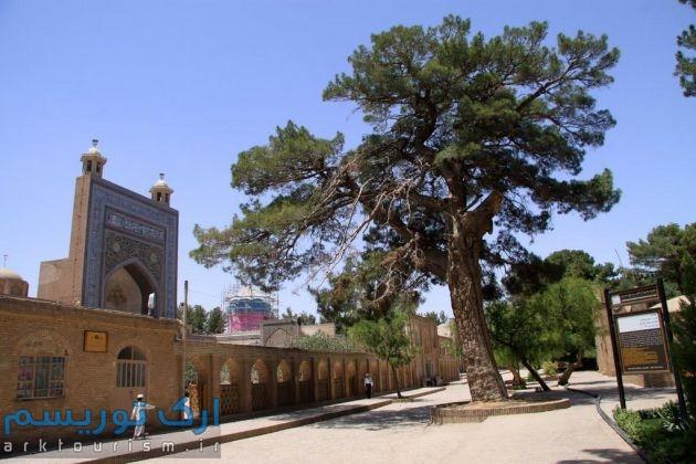 آرامگاه شیخ احمد جامی (10)