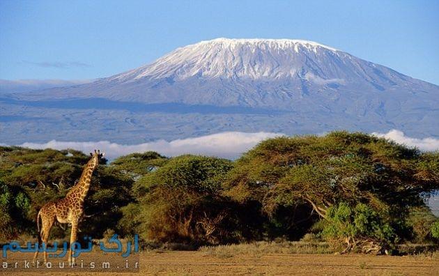 kilimanjaru
