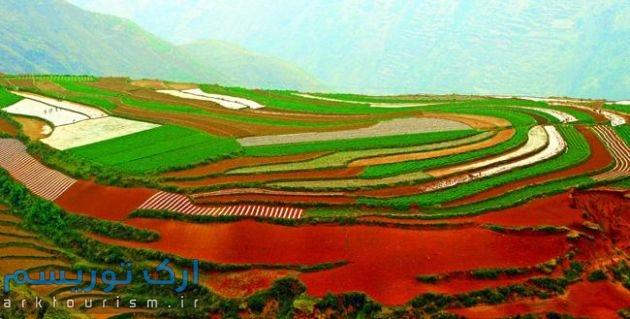 china (8)