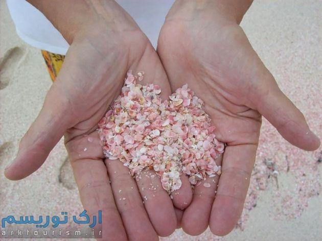Pink Beach (2)