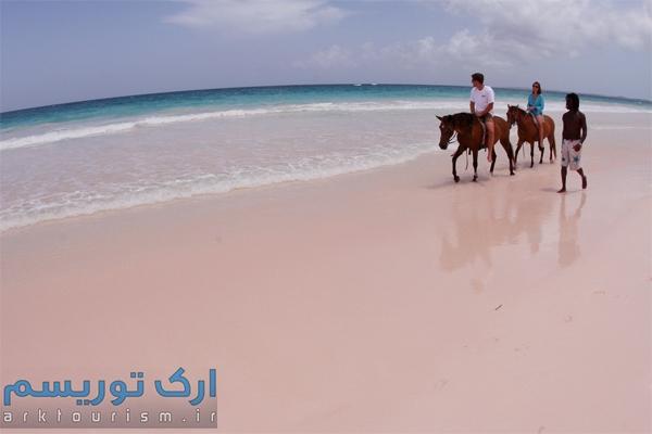 Pink Beach (8)