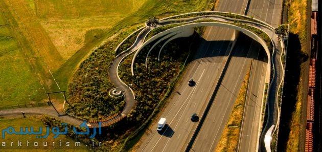 پل زمینی ونکوور (1)