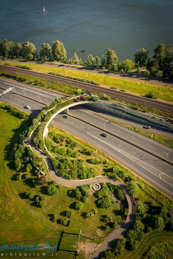 پل زمینی ونکوور (10)