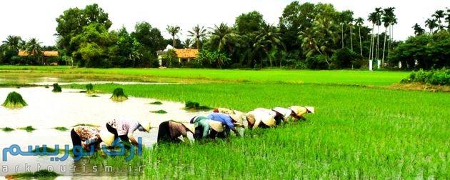 Mekong Delta (7)